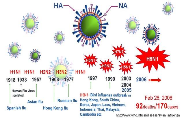 Influenza A Pandemics